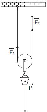 La poulie mobile dans les exercices de raisonnement mécanique